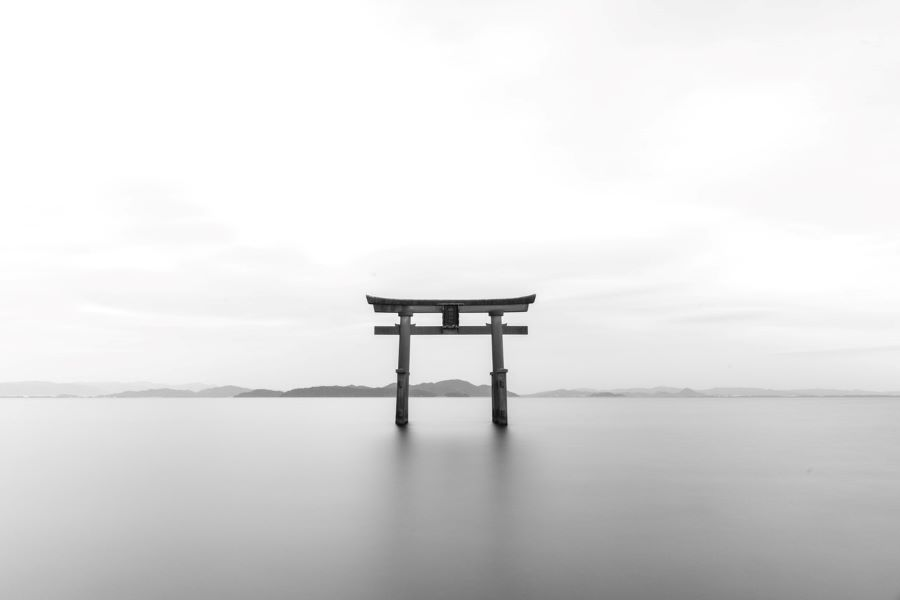 https://www.astriefuturo.it/wp-content/uploads/2019/12/zen.jpg